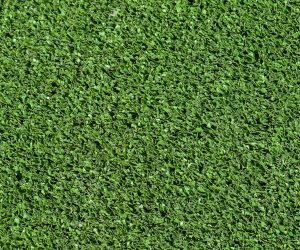 19mm Budget Synthetic Grass
