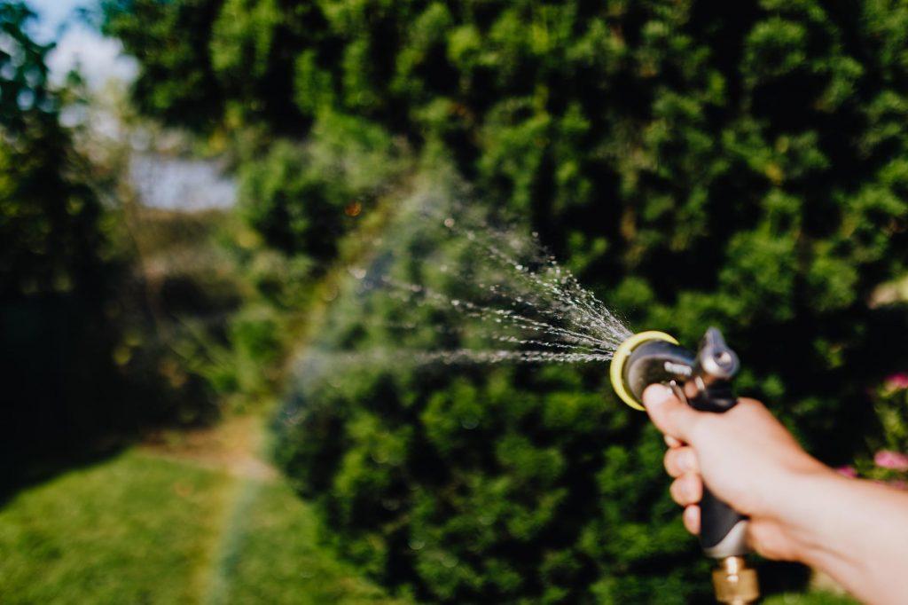Hand holding hose, hosing lawn.