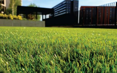 Laying Artificial Grass Tips and Tricks