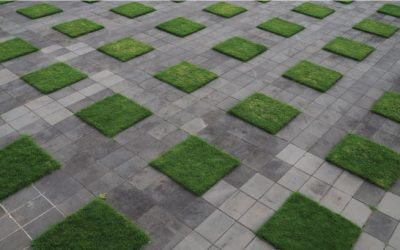 Landscaping Ideas for Artificial Grass