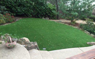 Best Artificial Grass For Your Backyard